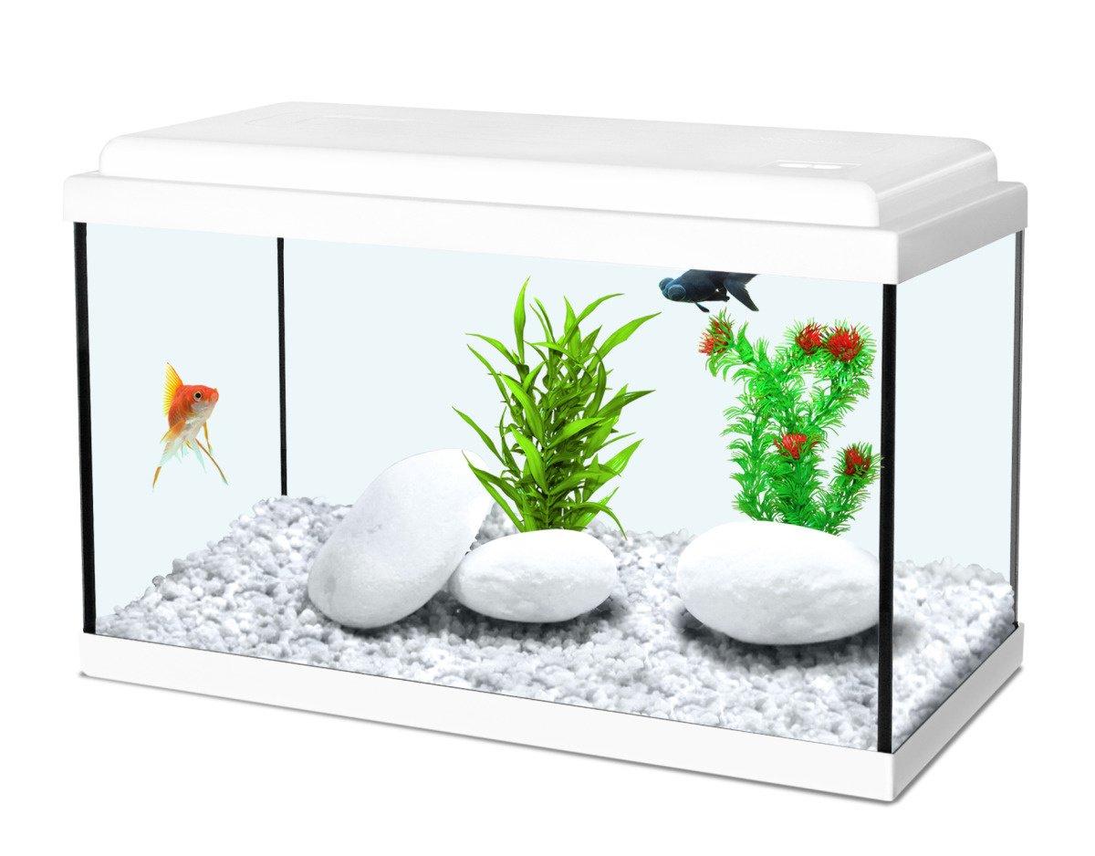 Aquarium 12,5L Nanolife Kidz 35 Blanc Zolux