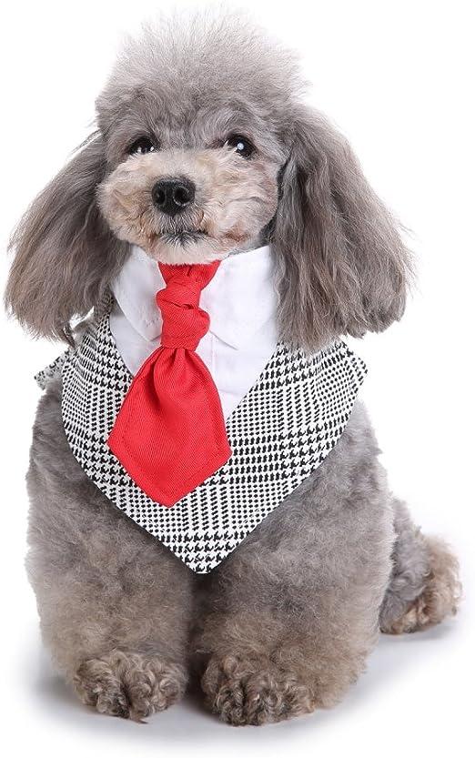 Amakunft - Bandana para Perro con Corbata de Perro, Collar para ...