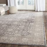 Safavieh Sofia Collection SOF330B Vintage Light Grey and Beige Distressed Area Rug (9' x 12')