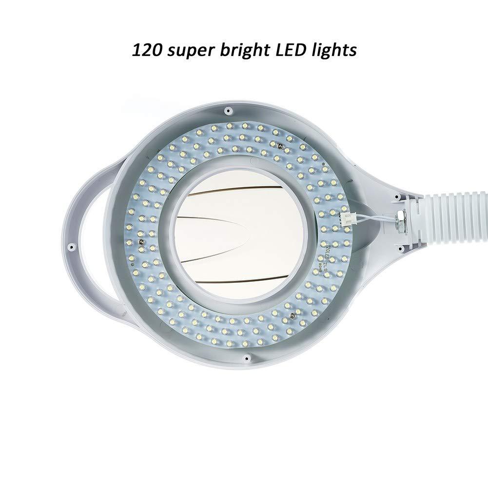 ZDXR 8 X LED Lupa Estetica L/ámpara Amplificadora con Soporte Laminado para Uso M/óvil Rotaci/ón 360 Ajuste de Abajo La Belleza Tatuaje Manicura para Sal/ón de Belleza Cl/ínicas