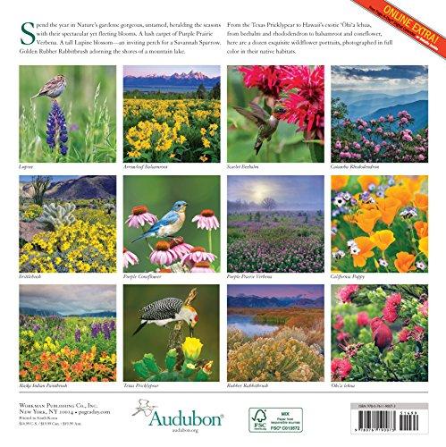 Audubon Wildflowers Wall Calendar 2017
