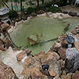 Pond Armor SKU-TAN-GA Non-Toxic Pond Shield Epoxy