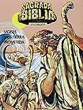 img - for Sagrada Biblia En Dibujos 3: Moises Y LA Tierra Prometida (Spanish Edition) book / textbook / text book