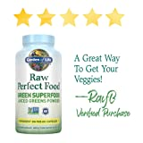 Garden of Life Raw Perfect Food Green Superfood