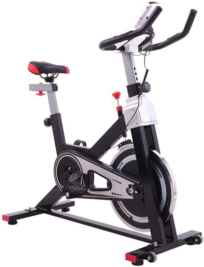 YHSFC Ciclismo Indoor, Aerobic Bicicleta De Ejercicio De ...