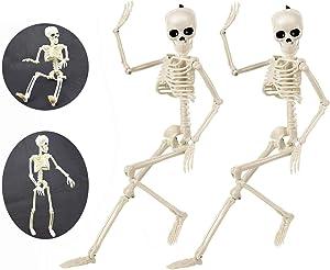 """Halloween Skeletons, Halloween Decorations Skull 16"""" Full Body Realistic Faux Human Skeleton Halloween Skull Decor 2 Packs"""