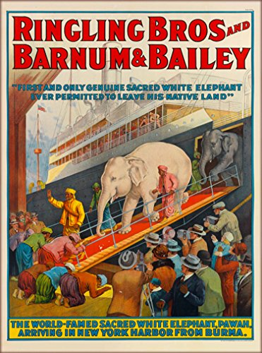(Ringling Brothers Combined Circus Pawah White Elephant from Burma Arrives in York United States Vintage Circus Travel Advertisement Art Poster Print. Measures 10 x 13.5 inches)