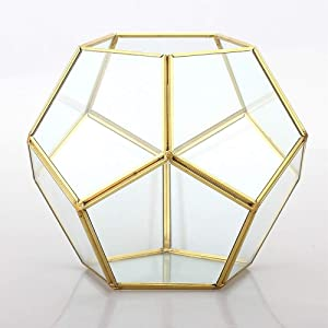Banord Goldern Tabletop Geometric Terrarium, 7.8 x 7.8 x 6.5 inches Metal with Glass Succulents Terrarium Container, Air Planter Jewelry Wedding Decor Flower Cardbox Candle Holder
