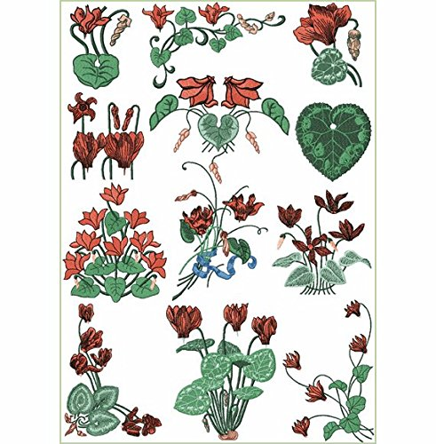(ThreaDelight ABC Machine Embroidery Designs Set Freestyle Cyclamens - 12 Designs, 5