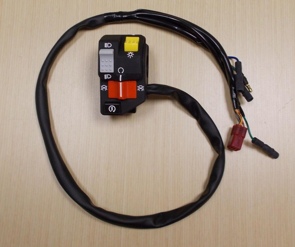 1997-2001 Honda TRX 250 TRX250 Recon Foot Shift Start Kill Light Switch