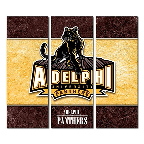 Adelphi University Panthers Triptych Canvas Wall Art Double Border (48x54 inches)
