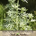 Package of 1,000 Seeds, Wormwood Herb (Artemisia absinthium) Non-GMO Seeds by Seed Needs USA