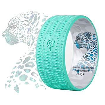 Amazon.com: Rodillo de ejercicio Abdominal de silicona, para ...