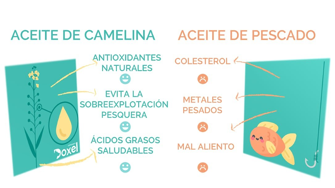 Doxel 4all-100ml Aceite para perros| Suplemento natural | Sistema Inmunitario reforzado| Articulaciones sanas| Pelo brillante| Piel sana| Ácidos grasos ...
