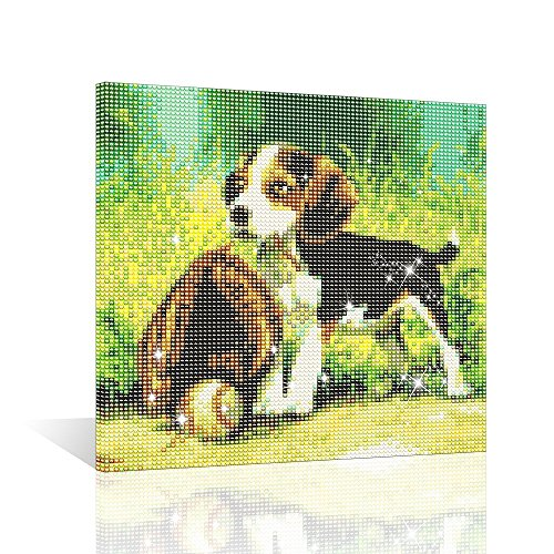 hi Stone 5D DIY Diamond Painting Diamond Embroidery Full Round Drill Mosaic Beadwork Room Decoration 2018 Novelty, Oil Painting Dog with Baseball