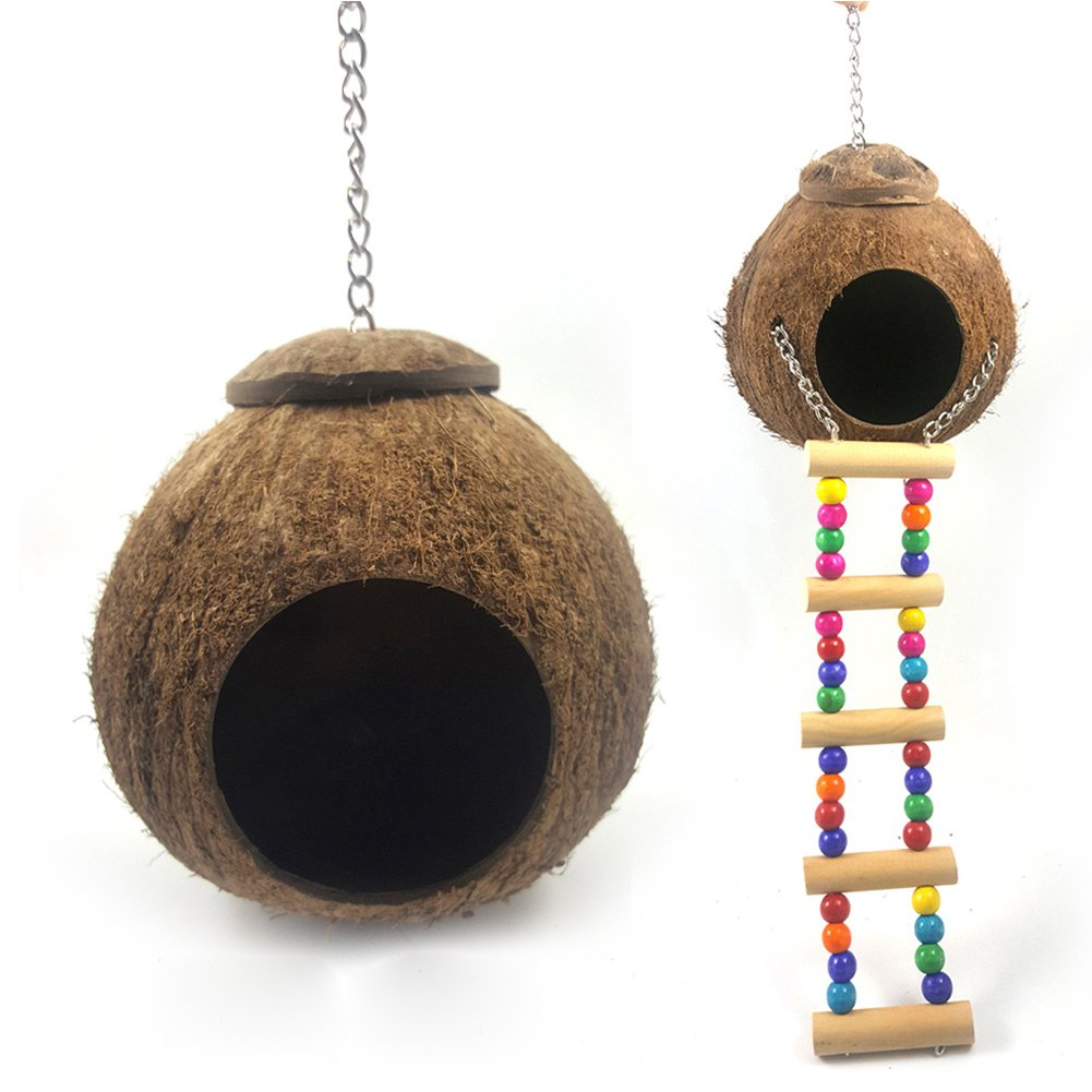 MEIBY Natural Coconut Shell Bird Nest House Bed for Pet Parrot Budgie Parakeet Cockatiel Canary Finch Pigeon Cage Hamster Rat Gerbil Mice Cage Feeder Toy (Bird Nest with Rope Ladder)