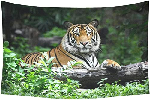 INTERESTPRINT Animal Wall Art Home Decor, Tiger in Forest Tapestry Wall Hanging Art Sets 60 X 40 Inches