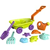 ColorBaby Set de Playa Color Vagoneta Verde 43506