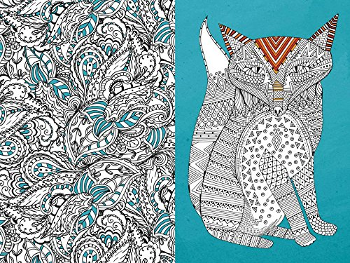 Pocket Posh Adult Coloring Book Art Therapy For Fun Relaxation