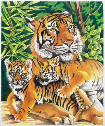 Reeves 10 Inch x12 Inch Pencil By Number Kit - Tiger & Cubs by Reeves