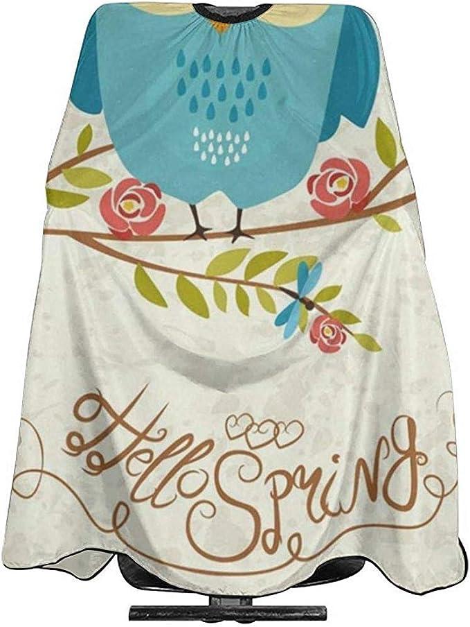 Capa Del Salón Divertido Hello Spring Owl Floración Barber ...