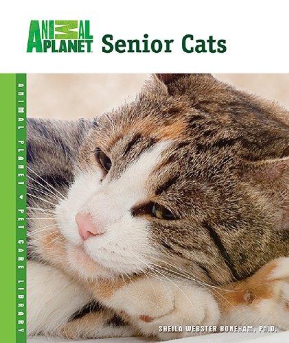 Planet Cat - 9