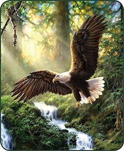 Eagles Flight Fur Blanket 79