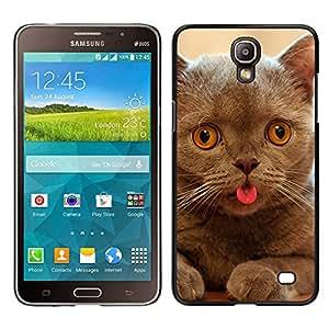 TopCaseStore / la caja del caucho duro de la cubierta de protección de la piel - Cat Kitten Chartreux British Shorthair - Samsung Galaxy Mega 2