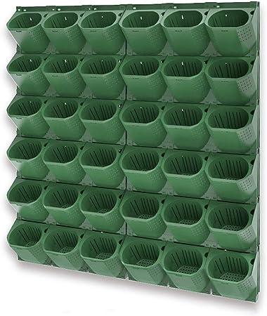 TTIK Creativo Jardín Vertical tu Muro,Verde Vegetal Mecanismo de Drenaje Innovador, 1Piezas Conjunto Exterior decoración de Plantas,12/㎡: Amazon.es: Hogar
