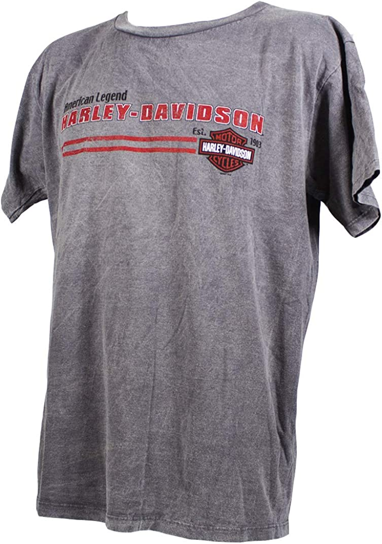 Harley-Davidson - Camiseta - para Hombre Gris Gris Large: Amazon.es: Ropa y accesorios