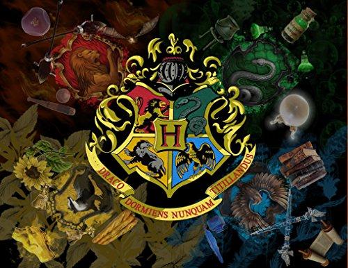 - Harry Potter Hogwarts Image Photo Cake Topper Sheet Personalized Custom Customized Birthday Party - 1/4 Sheet - 76994
