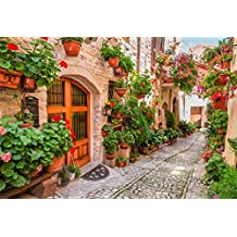 OFILA Italy Backdrop 10x6.5ft Photography Background Italian Town Pot Flowers Umbria Village Photos Travel Themed Party Decoration Events Video Studio Adult Portraits Blog Post Photography Props