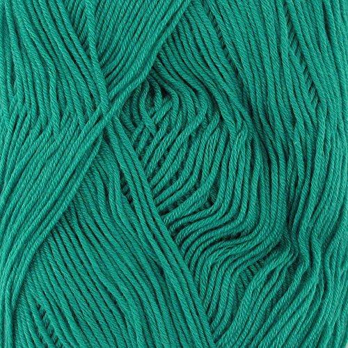 BambooMN Yarn - 2 Skeins - Soft Touch Bamboo Rayon/Acrylic Yarns - Solids 100g Balls - 24 Spring ()