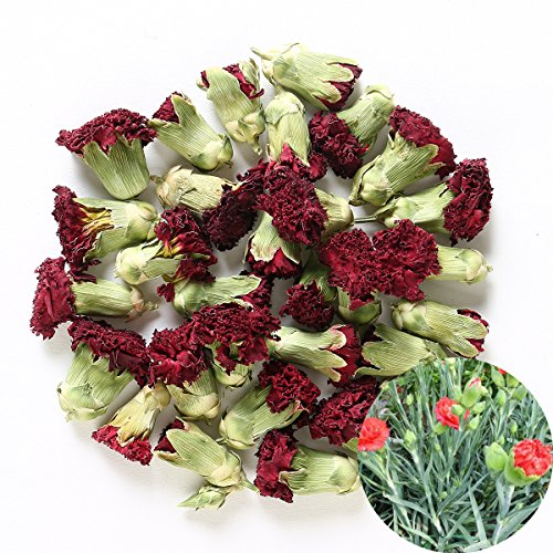 TooGet Fragrant Natural Carnation Flowers Organic Dried Dianthus Flowers Wholesale, Top Grade - 4 oz