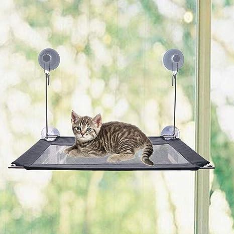 Amazon.com: Cama para gato con ventana de percha, hamaca ...