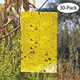 Best Trap For Leaf Miners - Kensizer 30-Pack Dual-Sided Yellow Sticky Traps for Flying Review