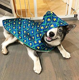Dog Raincoat Image