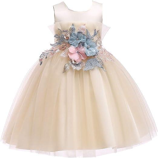 ChenYongPing Vestidos de niña niños Vestido de Las niñas de la ...