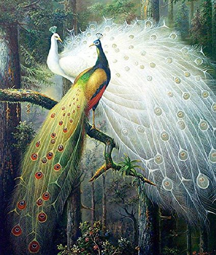 Wall Decor Kit (Lsinyan Peacock Lovers Cross Stitch Kit World Famous Paintings Diy Needlework Embroidery Set Animals Cross Stitching Wall Home Decor (silk thread))