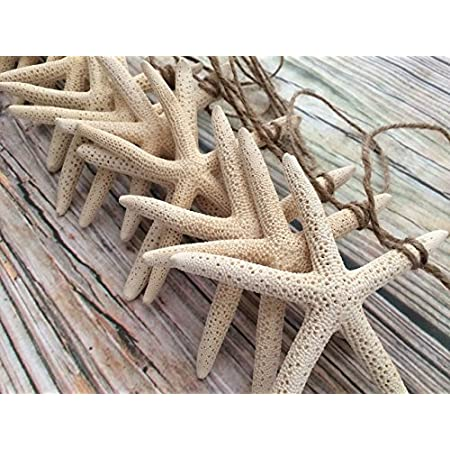 615piV6foNL._SS450_ Beachy Starfish and Seashell Garlands