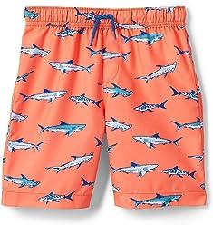 2170e3360c Lands' End Little Boys Print Swim Trunks