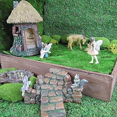 TG,LLC Mini alas de Hada pequeñas, Accesorio de jardín Miniatura, decoración de casa de muñecas: Amazon.es: Hogar