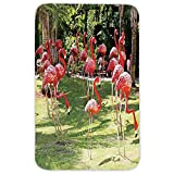 Rectangular Area Rug Mat Rug,Flamingo,Flamingo Bird Model in the Garden in Vibrant Colors Under Sunlight Shadows,Pink and Green,Home Decor Mat with Non Slip Backing