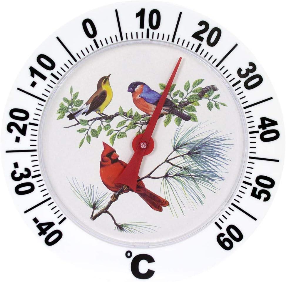 Genius Ideas /® Term/ómetro de D/ígitos Big Bird