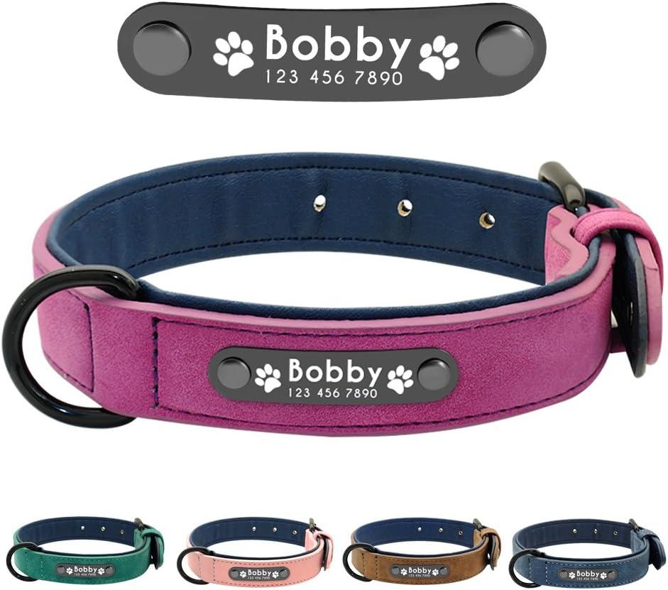 Didog - Collar de piel suave acolchada personalizable para perro, chapa de nombre, anilla en D, collar grabado para perro, tamaños pequeño, mediano y grande: Amazon.es: Productos para mascotas