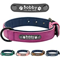 Didog Leather Custom Dog Collar,Engraved Dog Collars with Personalized Nameplate,Padded Custom Collar for Small Medium…