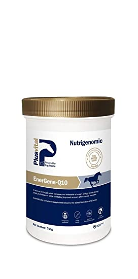 Plusvital EnerGene-Q10 Nutritional Supplements, 750 g, One Size