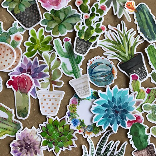 Adorable Watercolor Cactus and Succulent Plants Stickers for Your Laptop, Scrapbook, and Daily Planner by Navy Peony (28 Pieces)
