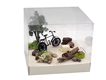 Amazon De Zauberdeko Geldgeschenk Verpackung Geldverpackung Fahrrad