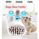 SCOPE-X et Dog Cat Interactive Puzzle Enrichment Toys Slow Feeder for IQ Training and Entertainment by Spinning Bottle to Prevent Obesity